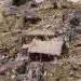keriye-yer-tewresh-harabe-2014-75.png