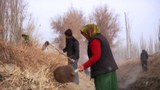 uyghur-hashar-osteng-chepish-1.jpg