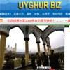 Uyghurbiz-torbet1-100