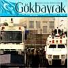 Kok-bayraq-jornili-100.jpg