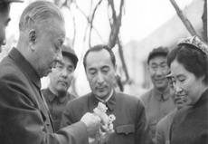 سەيپىدىن ئەزىزى (ئوتتۇرىدا) ئۇيغۇر ئاپتونوم رايونىغا زىيارەتكەن كەلگەن خىتاي دۆلەت رەئىسى ليۇ شاۋچى ۋە خانىمى ۋاڭ گۇاڭمەي بىلەن بىللە. 1964-يىلى.