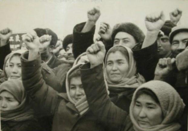 خىتاينىڭ 1950-1960-يىللاردا ئۇيغۇر دىيارىدا قوزغىغان سىياسىي دولقۇنلىرىدا سەپەرۋەرلىككە كەلتۈرۈلگەن بىر ئەۋلاد كىشىلەر.